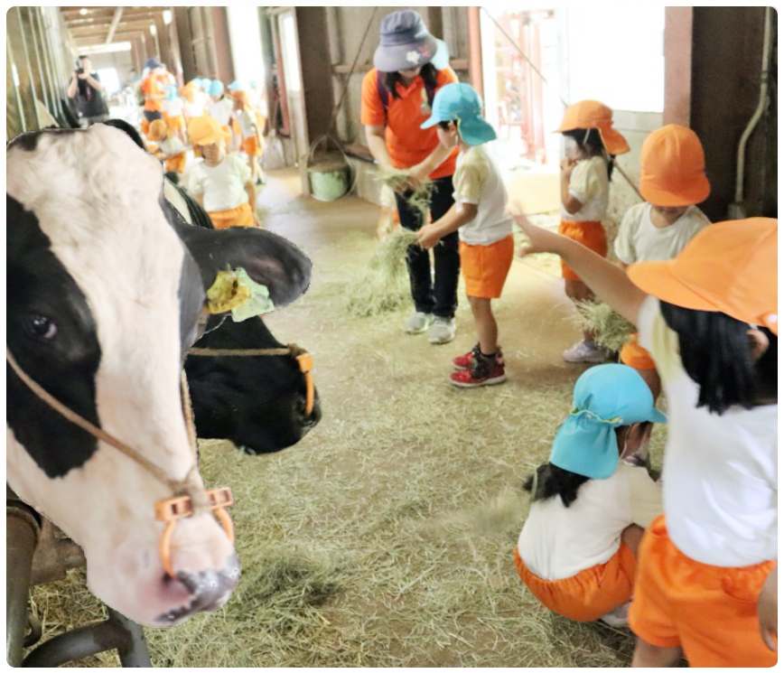 大分県酪農業協同組合のイメージ